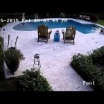 Hoverboard FAIL – driven into backyard pool, doesn't explode, no fire, doesn't electrocute girl who dives in to retrieve it
